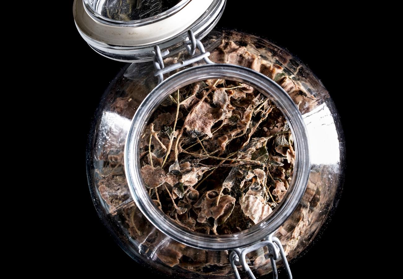 barattolo con erbe fermentate in conservazione