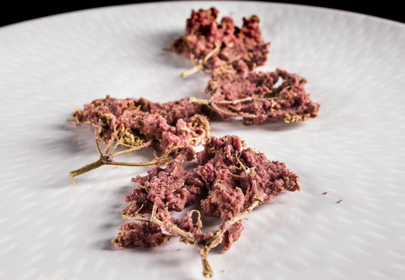 erbe spontanee fermentate del bosco del casentino